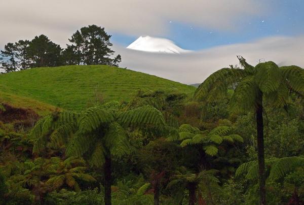 14. Moonlit mountain from Kent Rd, Taranaki