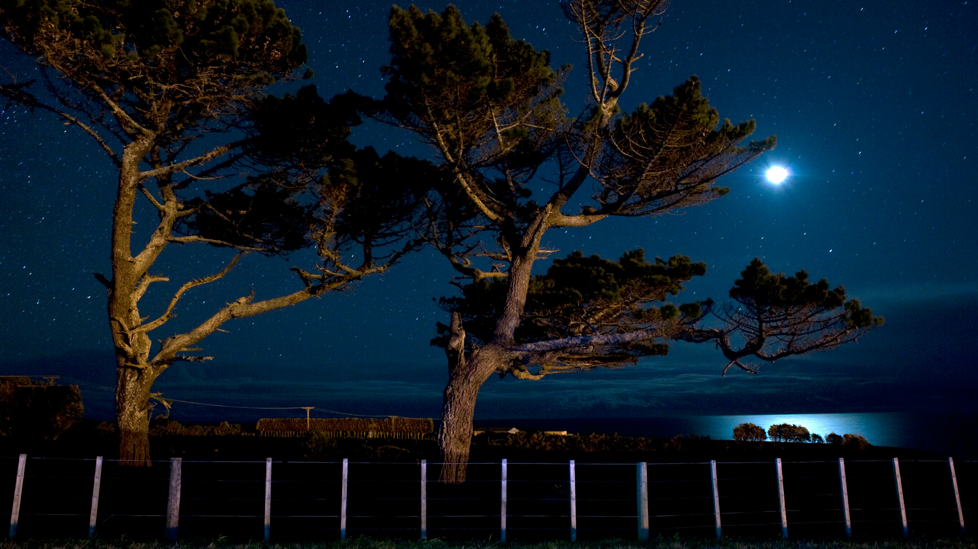 3254. Crescent moonlight, Omata, Taranaki
