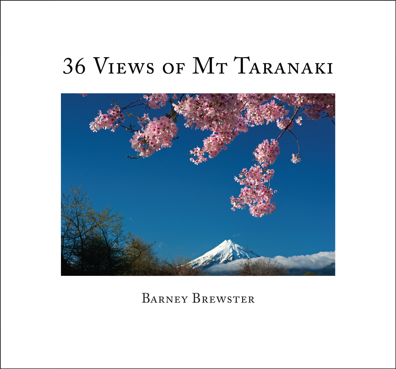 36-Views-of-Mt-Taranaki-front-cover