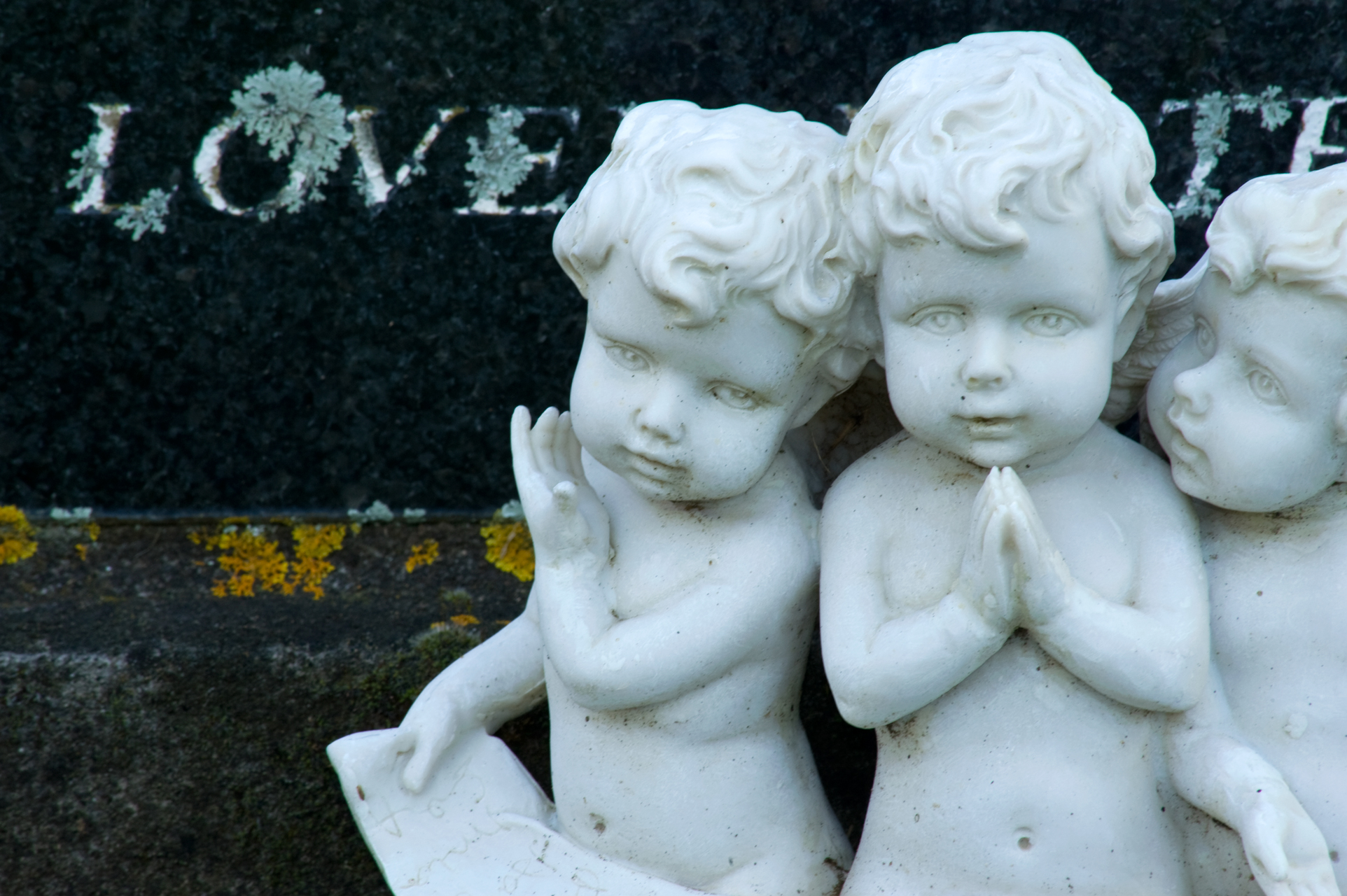 Memento mori 6: Love at Mokau