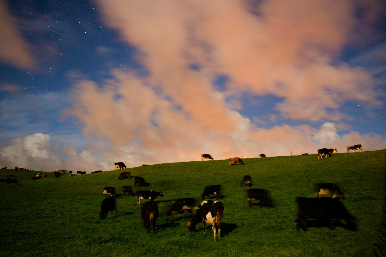 Moonlight on Otaraoa Rd, Taranaki