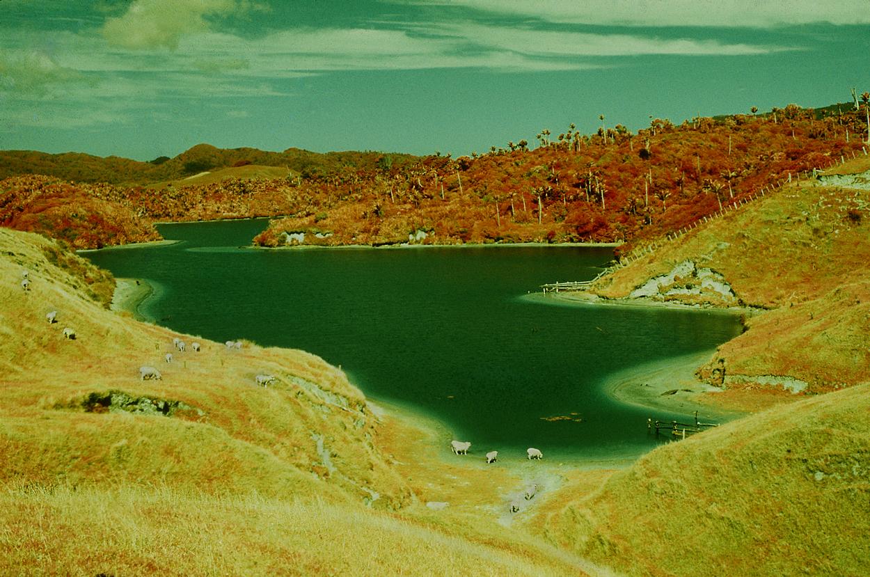 Kaihoka Lake in Infra Red, Golden Bay
