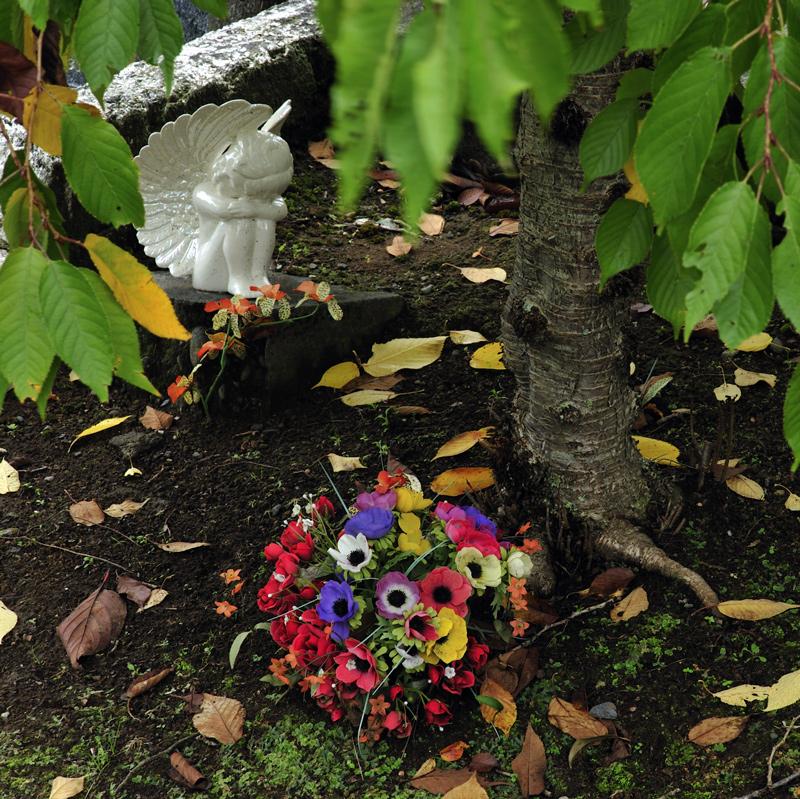 Memento mori: Te Henui detail