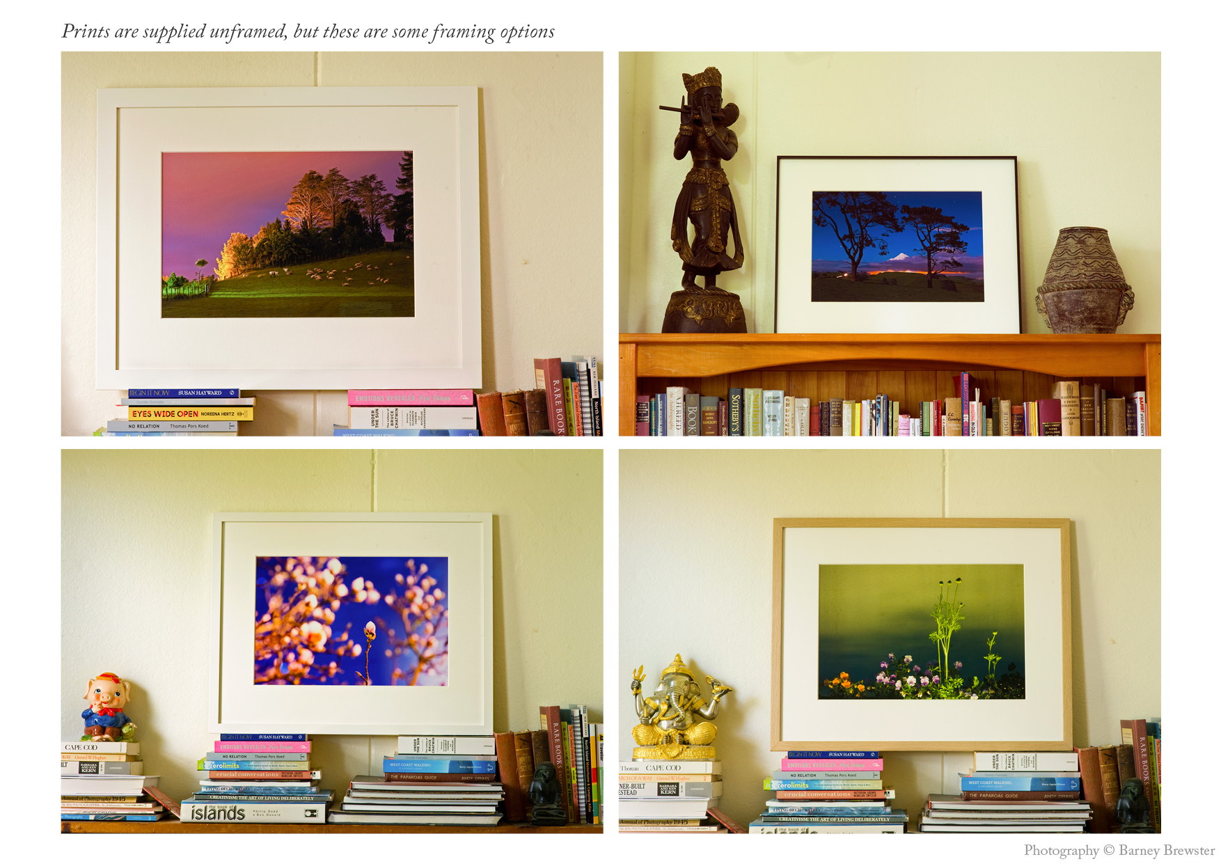 Framed limited edition fine art prints by Barney Brewster