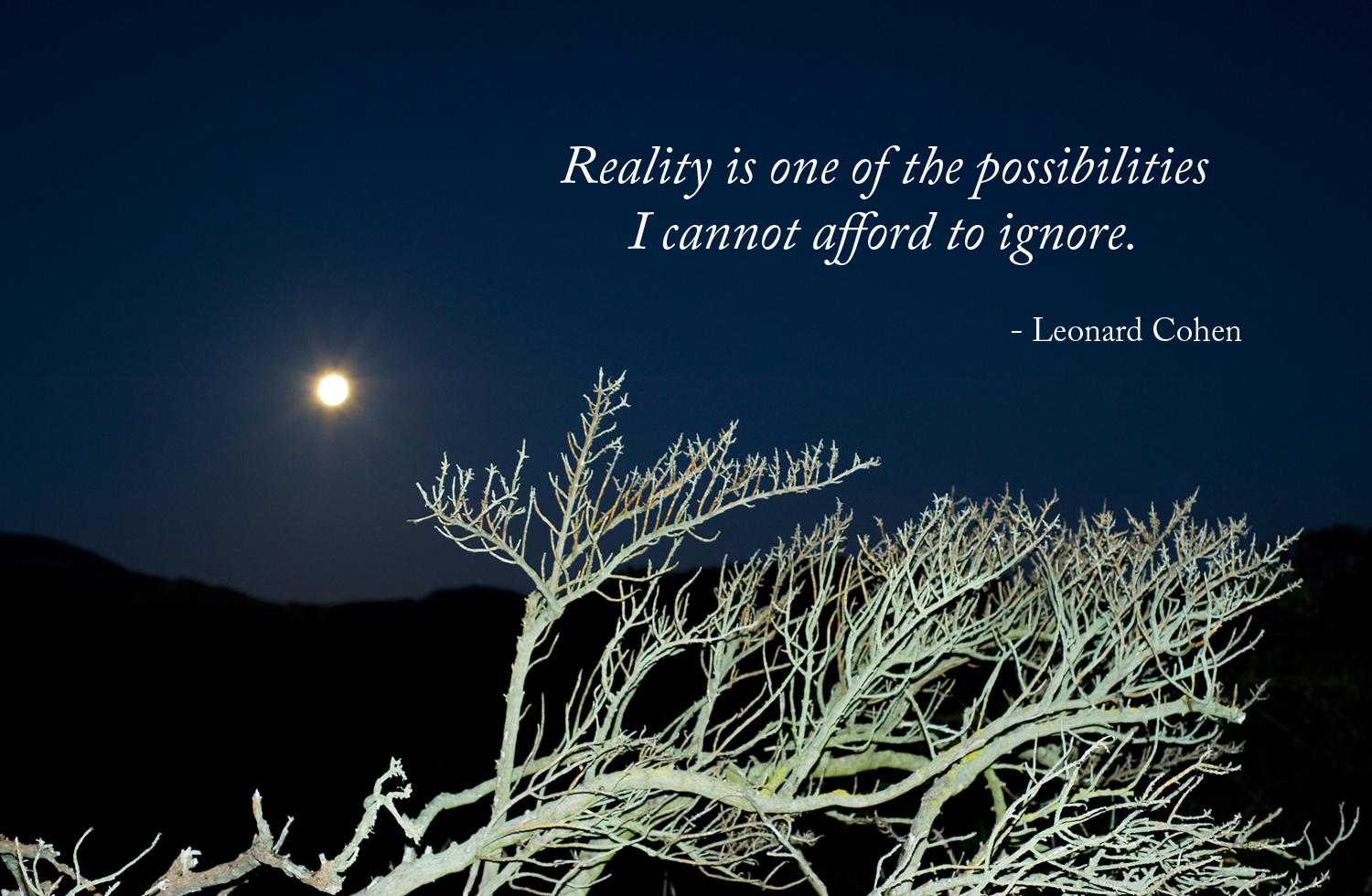 Reality is one of the possibilities